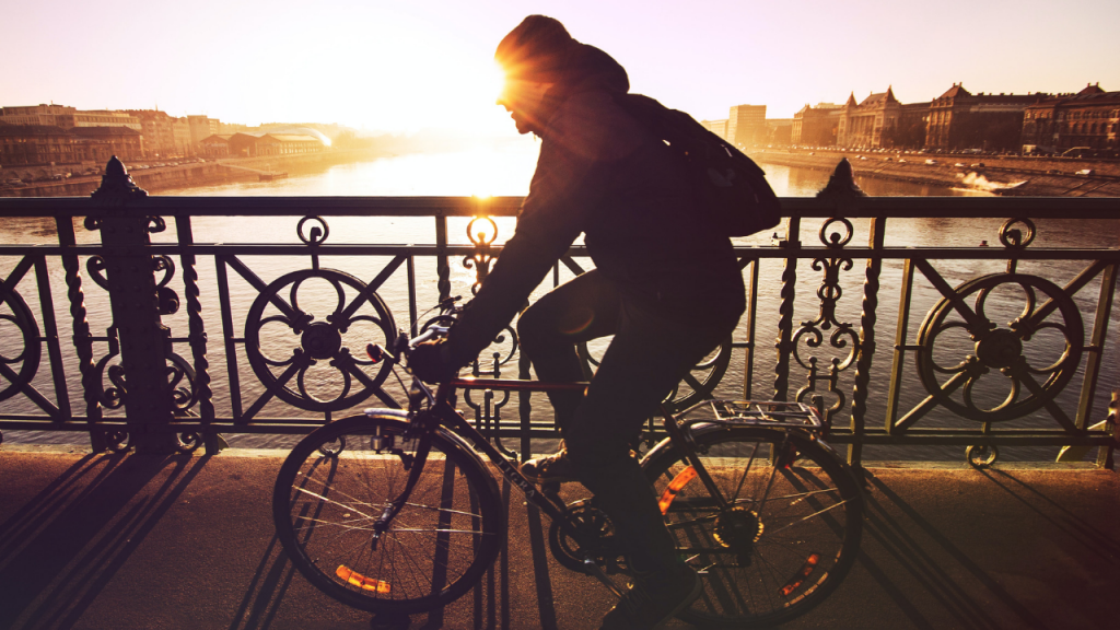 Before finding your bike size, pick the type of bike that best suits your needs